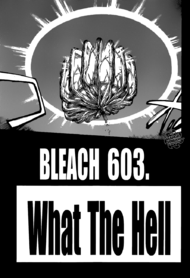 603Cover