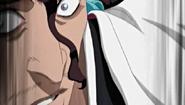 Shunsui attacks Wonderweiss