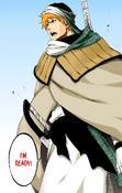 Ichigo listo para regresar al seireitei