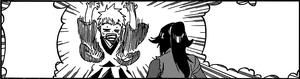 625 Ichigo le pide explicaciones a Yoruichi