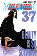 Bleach portada 37