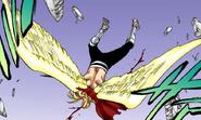 669Gerard's wings