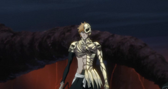 Ichigo skull
