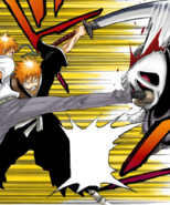 16Ichigo and Kon defeat
