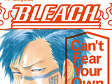 Bleach: Can't Fear Your Own World