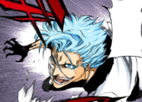630Grimmjow pursues