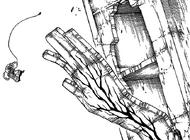 R638 Ręka