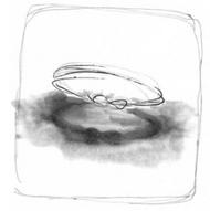 Volume 61 Intro Image