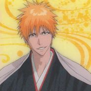 Bleach Clear Collection -4 (9)