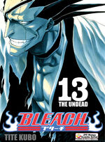Bleach okladka 13