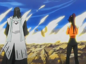 Byakuya et Yoruichi regardant le combat final entre Ichigo et Kariya