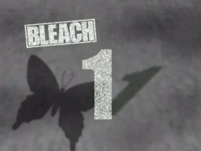 290px-Bleach 1