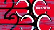 Bleach 200