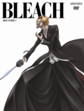 Bleach Vol. 31 Cover
