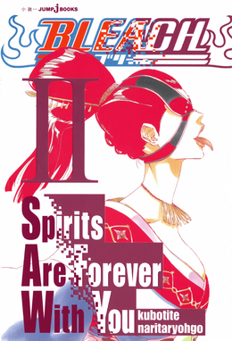 Bleach Spirits Are Forever With You II
