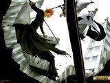 Saga de la Batalla de Karakura