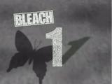 Arc du Shinigami Remplaçant (Anime)