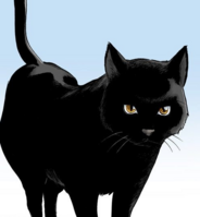 51Yoruichi's cat form