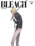 Bleach Vol. 30 Cover