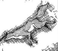 R558 zwierzęca postać Komamury