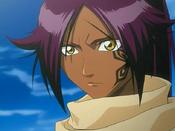 Bleach yoruichi133