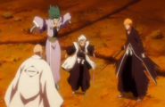 Hyorinmaru and Hitsugaya intervene