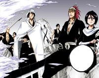 Los shinigamis enfrentan a los Sternritter