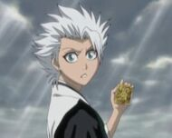 Hitsugaya and Oin