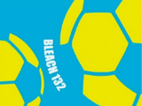 Hitsugaya, Karin i piłka nożna