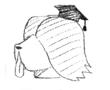 110px-Papyrus