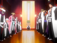 O24 Yamamoto, Sui-Feng, Unohana, Aizen, Byakuya, Komamura, Shunsui, Tosen, Hitsugaya, Zaraki i Mayuri na spotkaniu