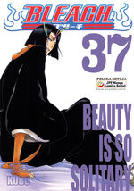Bleach cover 37