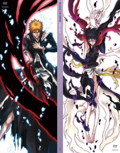 Bleach Fade to Black Limited Edition DVD Boxset Cover