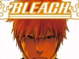 Bleach: Official Character Book 4 The Rebooted Souls