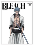 Bleach Vol. 29 Cover