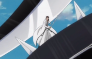 293Aizen is attacked