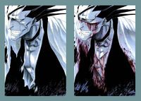 Kenpachi volume 13 all colour