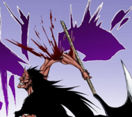 670Kenpachi loses his arm