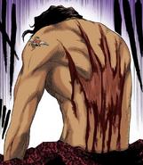 7Sado's wound