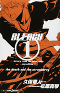 Bleach Letters From The Other Side