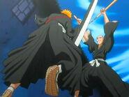 Ichigo vs Ikkaku