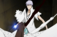 307Aizen slashes