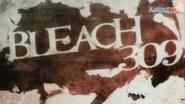 Bleach309