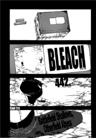 Bleach Chapter 442 Cover