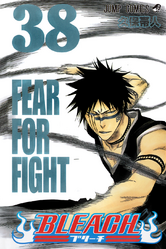 Bleach cover 38