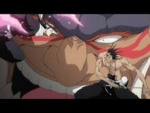 Byakuya et Kenpachi s'affrontent