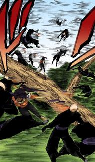 154Yoruichi defeats