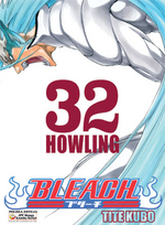 Bleach cover 32
