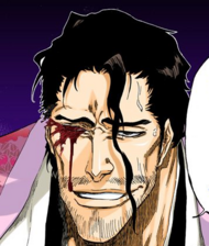 497Shunsui loses