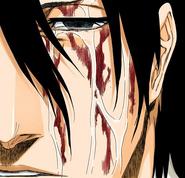 512Byakuya cries